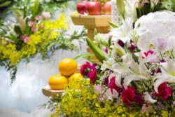 生前葬の費用の目安は20万円から。生前葬の意味やメリット、デメリットすべて教えます