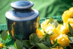 埋葬許可証はいつ必要?取得方法や提出先、紛失時の対応まで解説