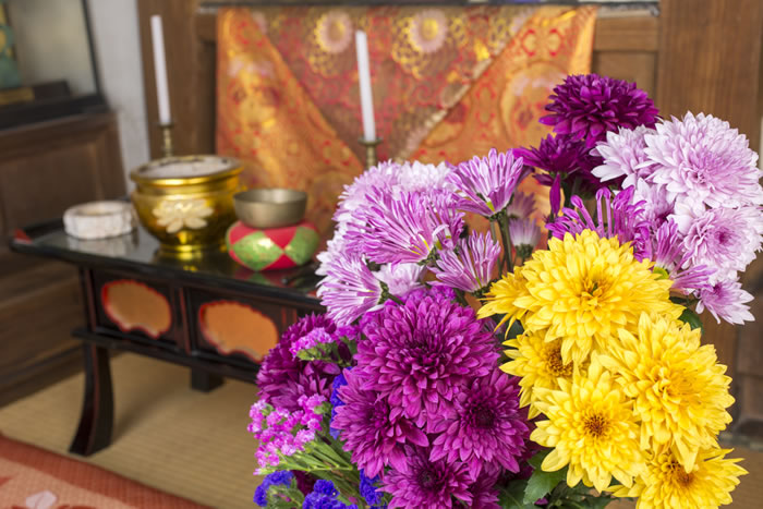 仏花の正しい選び方ガイド|お供えする花にふさわしい花、ふさわしくない花を完全解説