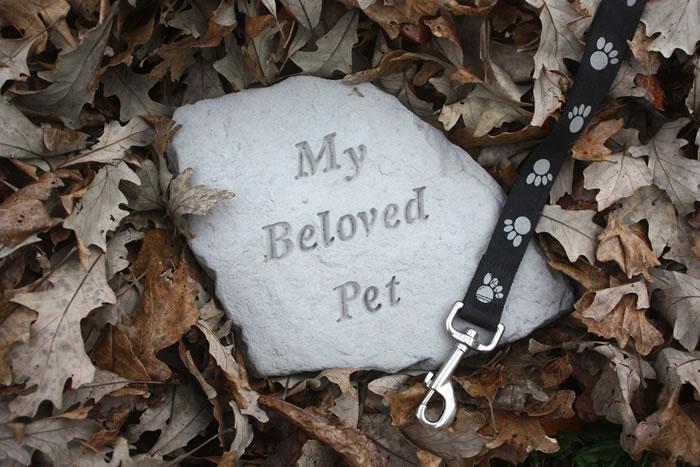 ペット霊園を選ぶ時のポイントを解説