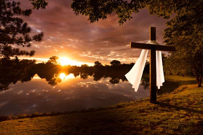 自然葬を選ぶ時のメリットやデメリット