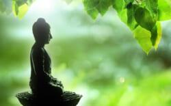 菩提とはどういう意味?「菩提」「菩提心」についてその意味や使い方などわかりやすく解説