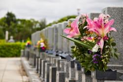 お墓参り代行サービス|サービス内容や金額相場を解説