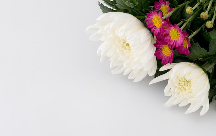 家族葬とは家族だけで行う葬儀ではない?家族葬のマナーや香典の金額相場について解説