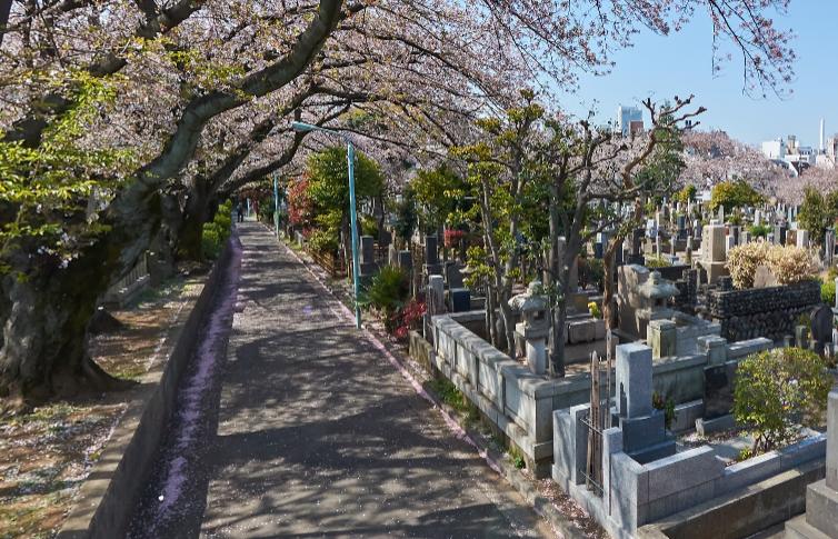 「染井霊園」 東京都豊島区|多くの著名人が眠る墓地としても有名な都立霊園