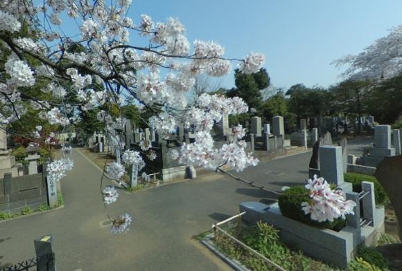 「谷中霊園」 東京都台東区|日本画家の大家・横山大観など多くの著名人が眠るお墓